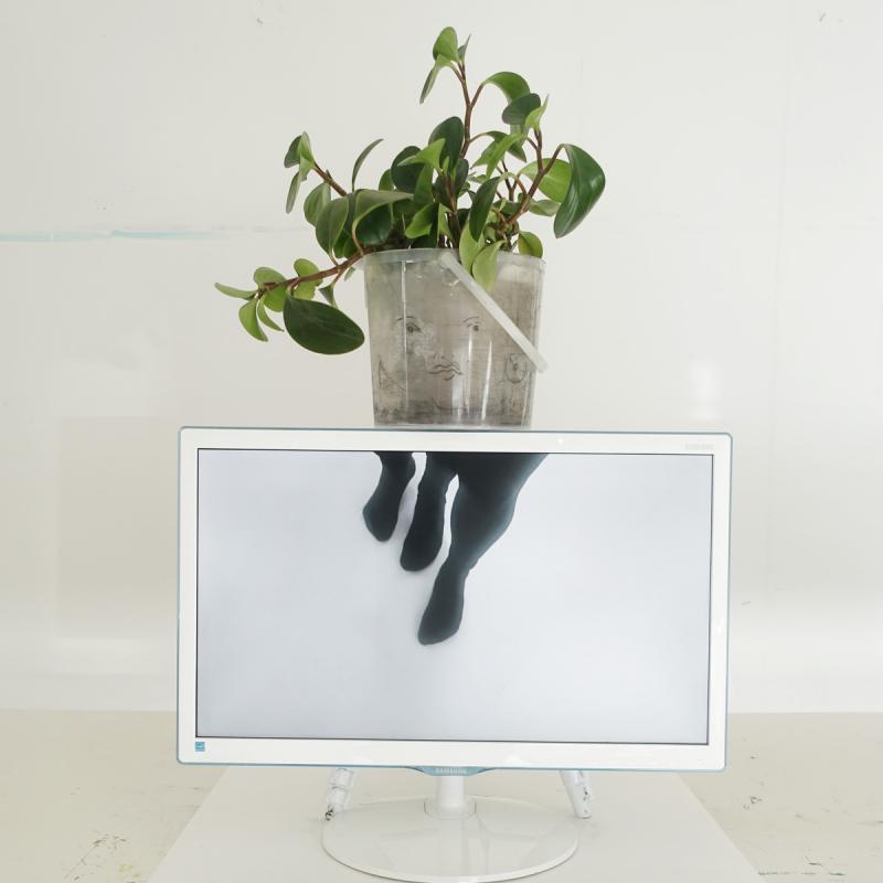 Ariane Müller, Martin Ebner, Untitled (It), 2019, Video Loop, Mixed media