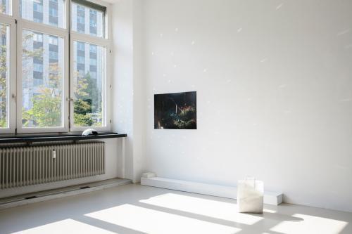 Ariane Müller, Kunstverein Nürnberg 31